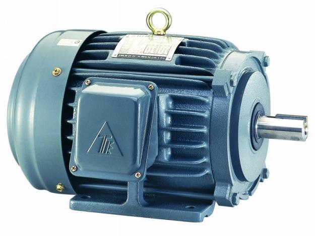TECO - Single Phase 240 V High Torque Dual Capaciator Motors